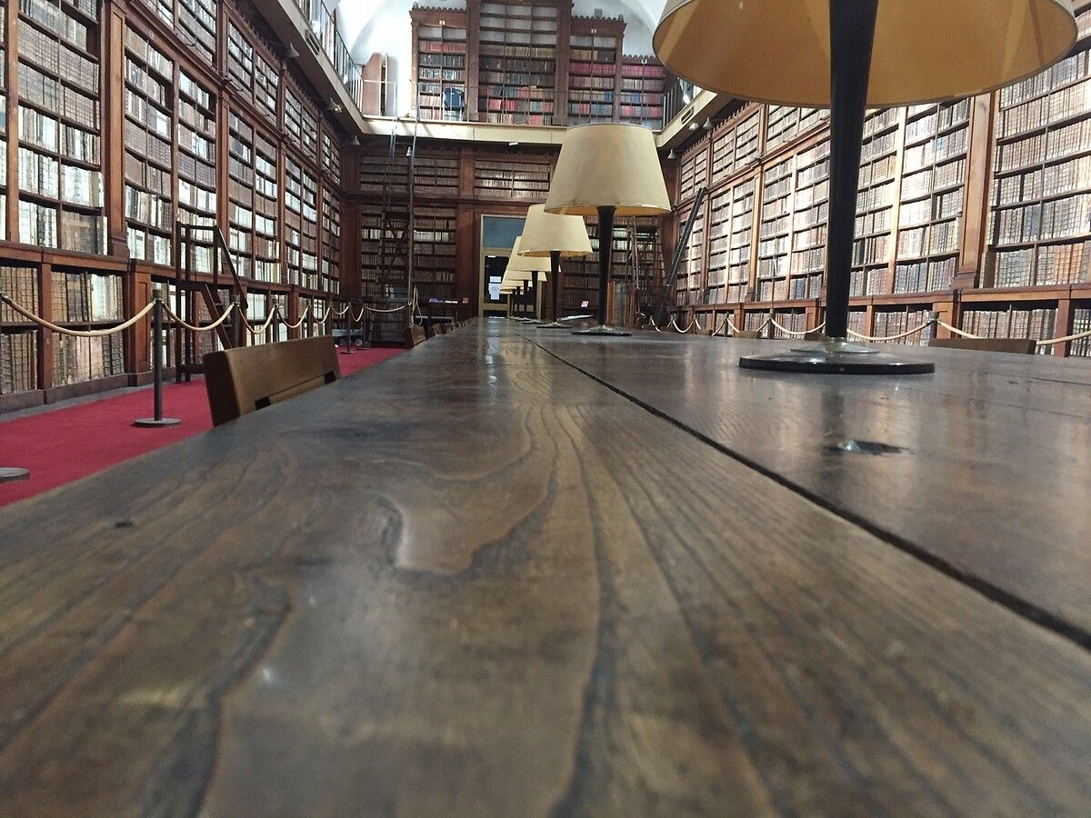 Restauration de la bibliothèque Fesch d'Ajaccio