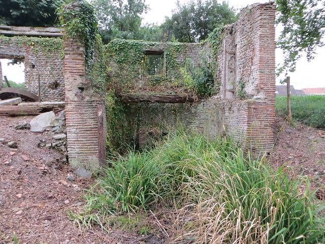 Moulin recouvert de broussailles