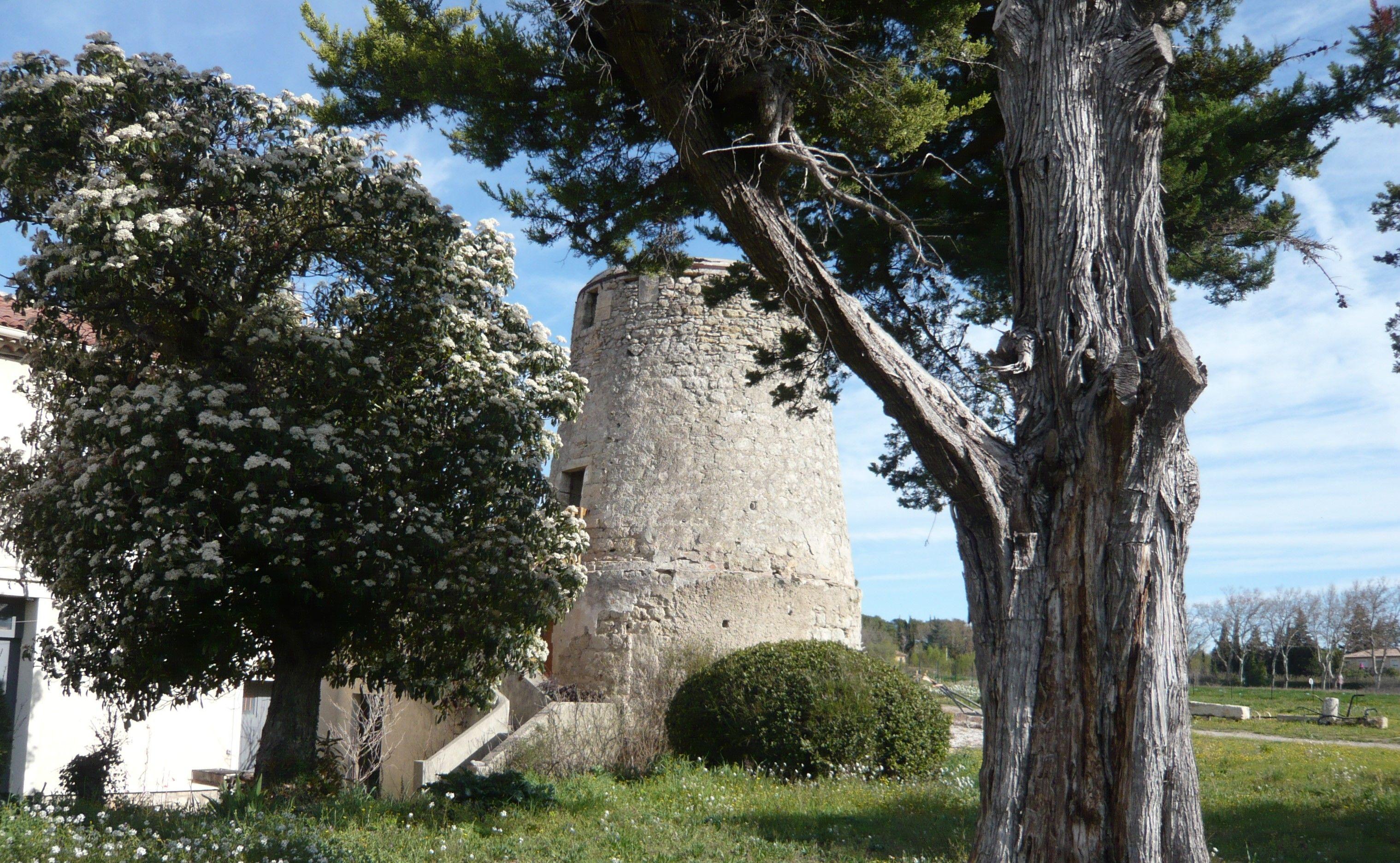 Le moulin à vent de Juffet à Montbazin