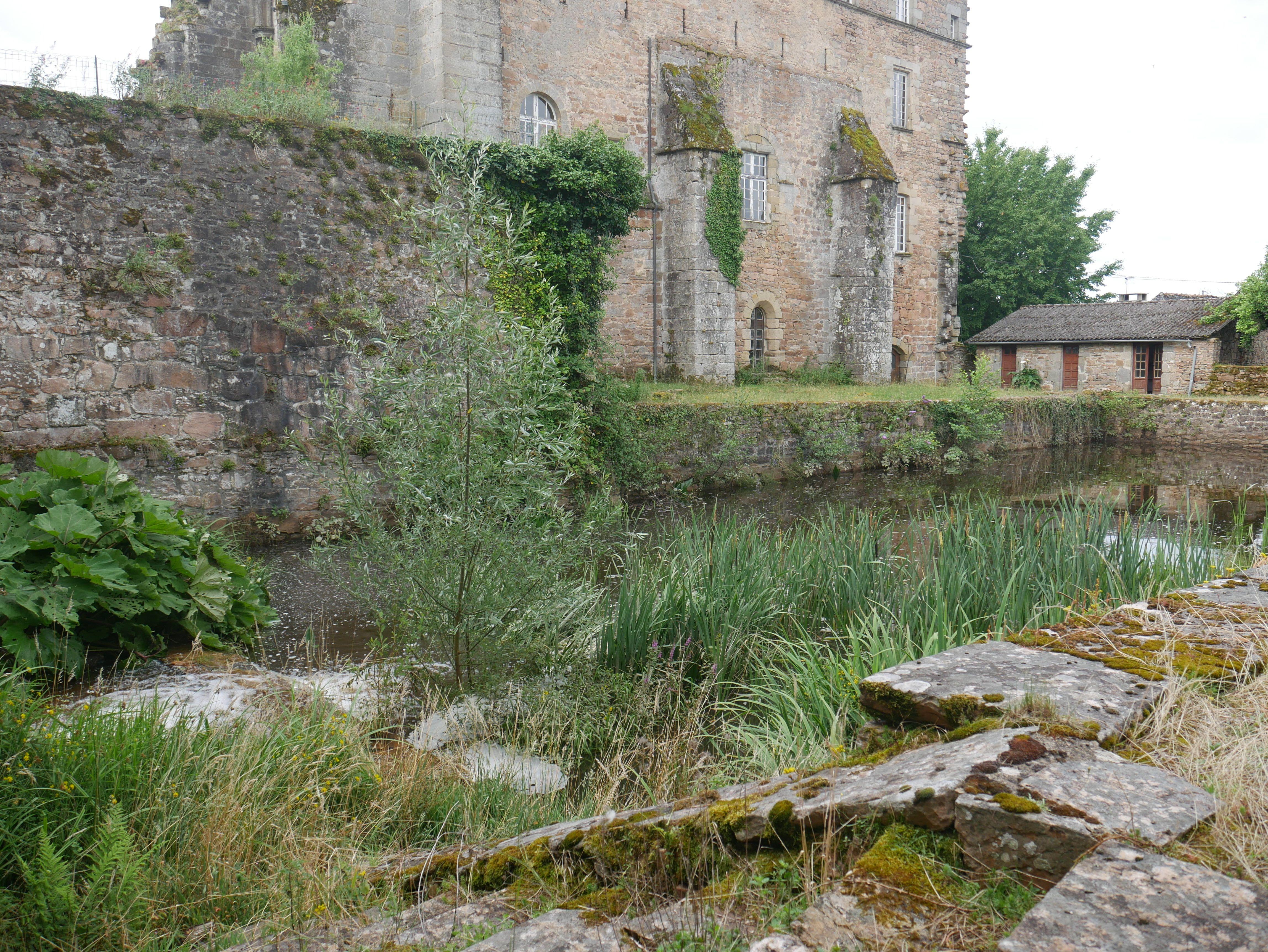 Vivier de L'Abbaye D'Aubazine