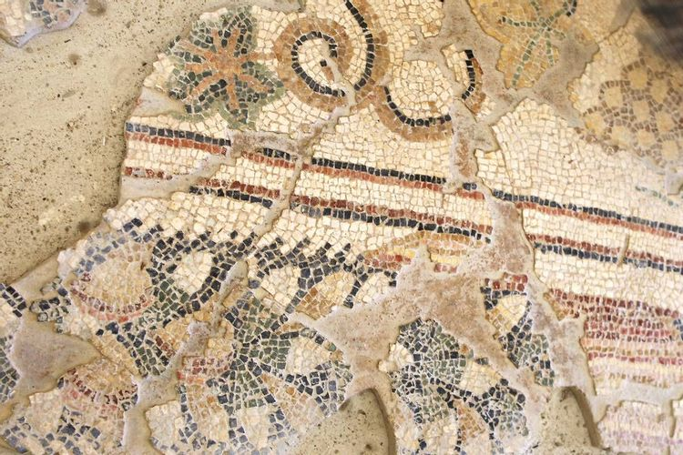 Mosaïques de la Villa Gallo-romaine de Séviac