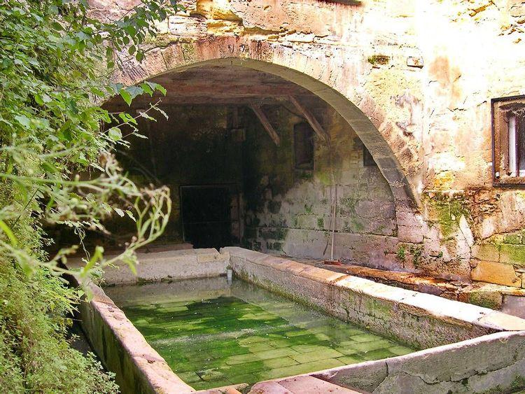 Lavoir eau verte