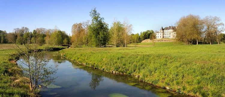 Participer à la renaissance des miroirs d'eau du domaine de Méréville