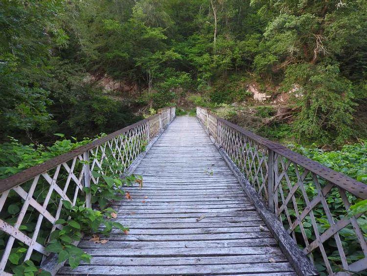 Pont des Graves