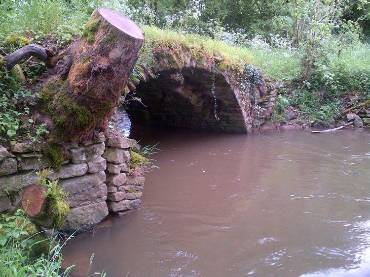 Ponts de Saplous
