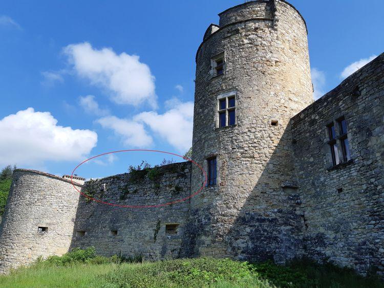 château de roussillon à saint-pierre lafeuille