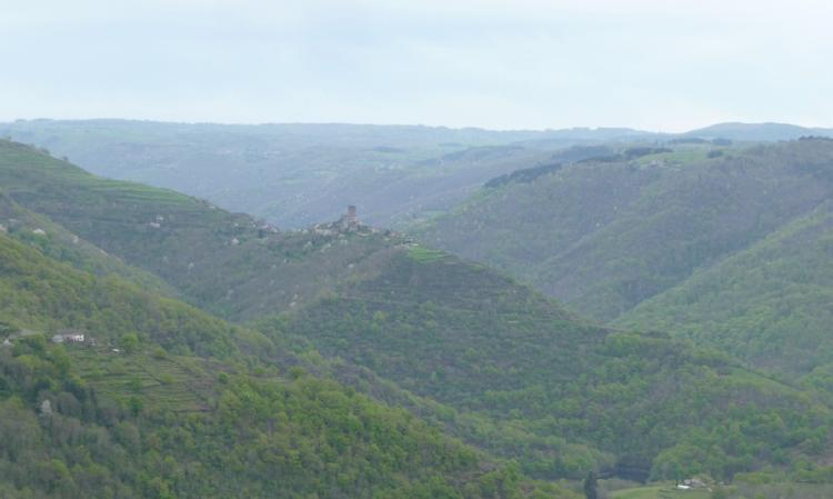 Terrasses du Site de Valon